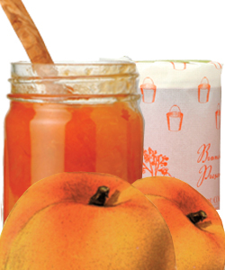 KATZ APRICOT PRESERVES - Sold Out Until Summer 2021!
