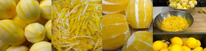 Branches Organic Meyer Lemon Marmalade